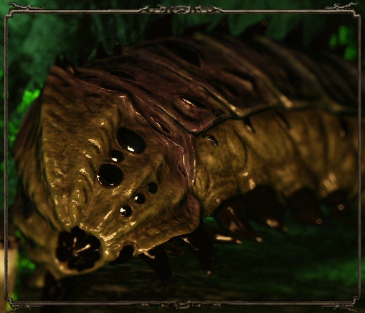 Enemies Black Gulch Dark Souls 2 Wiki