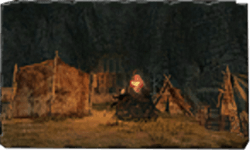 Royal Army Campsite bonfire.png