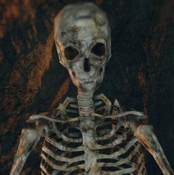 1086 best Skulls, skeleton,skeletal .. images on Pinterest
