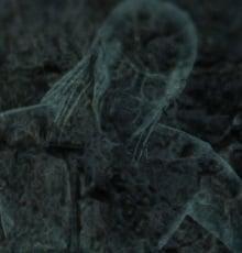 Wall_Spectre.jpg